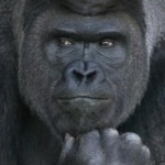 Profile picture of Thinker